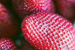 Strawberriers