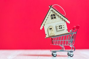 house model on shopping cart