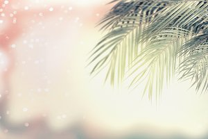 Summer tropical nature background