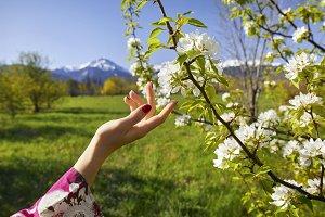 Woman in blossom garden