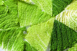 background of cabbage leaves. the pattern of healthy cuisine. ha