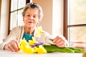 Senior woman by the window arranging bouquet of daffodils