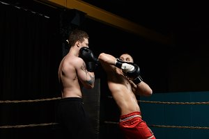 Two boxers having fight in boxing ring: man with tattooed shoulders standing in defense position while his opponent in red trousers aiming elbow at his face. Rivalry, confrontation and competition
