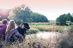 Loving couple with a dog at sunset