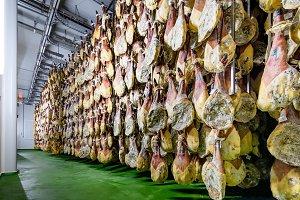 hams of iberian pig