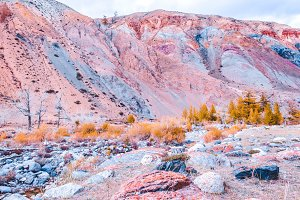 Colorful pink hills