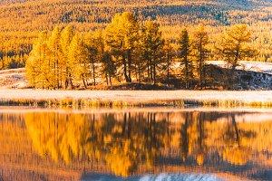 Autumn Sunny weather