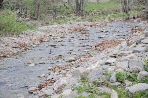 small river