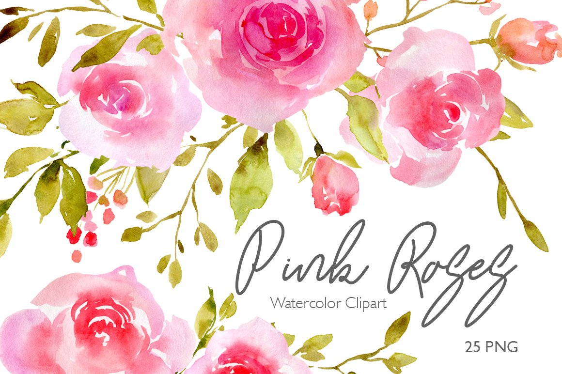 Pink Watercolor Flowers Roses Png Illustrations Creative Market