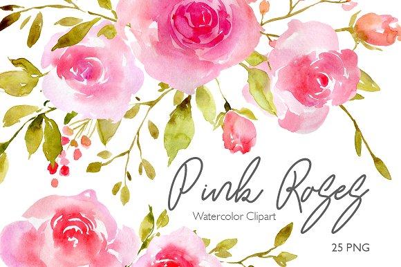 Pink Watercolor Flowers Roses PNG