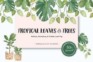 Tropical Leaves & Trees Clipart