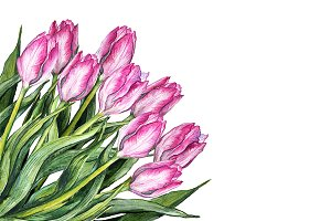 Watercolor tulip flower bouquet art