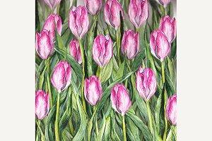 3D Watercolor pink tulip flowerbed