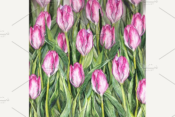 3D Watercolor Pink Tulip Flowerbed