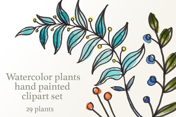 Watercolor Branches And Plants