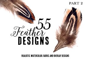 55 Feather Designs Real & Watercolor