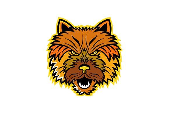 Norwich Terrier Mascot Front