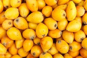 the fruits of loquat