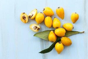 Loquat orange fruits on blue