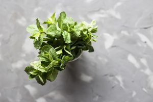 Bright mint leaves on a gray