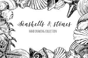 Seashells & stones set / SALE - 40%