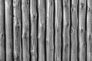 shiny black and white wooden wall
