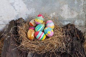 colorful easter egg on old log