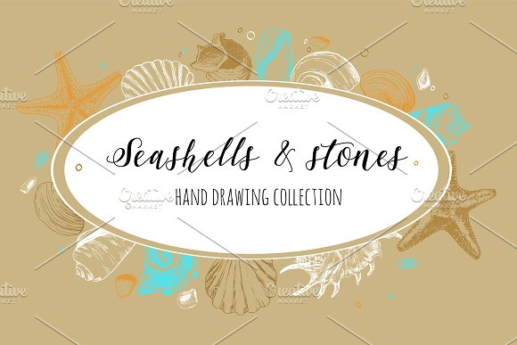 Seashells Stones Set