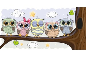 Cute Owls is sitting on a brunch