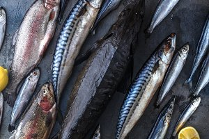 Assortment of fresh fish on dark background, top view