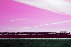 The pink sky and the horizon
