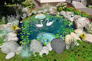 3D visualization. Swans in the pond