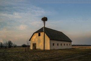 Stork socket before darkness