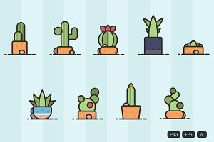 9 Linear Cactus