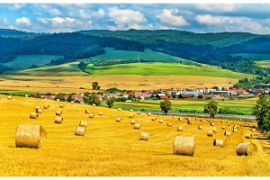 Straw bales on a wheat field in Slovakia