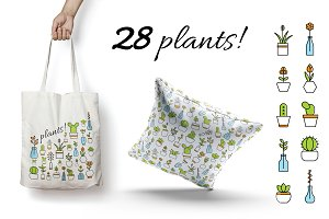 28 plants