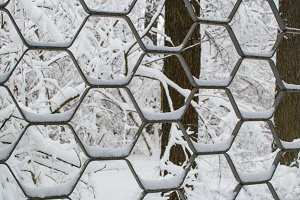Abstract Textural Background Of Iron Decorative Fence With Snow In Winter Park Close Up.
