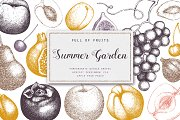 Summer Fruits Sketch Collection