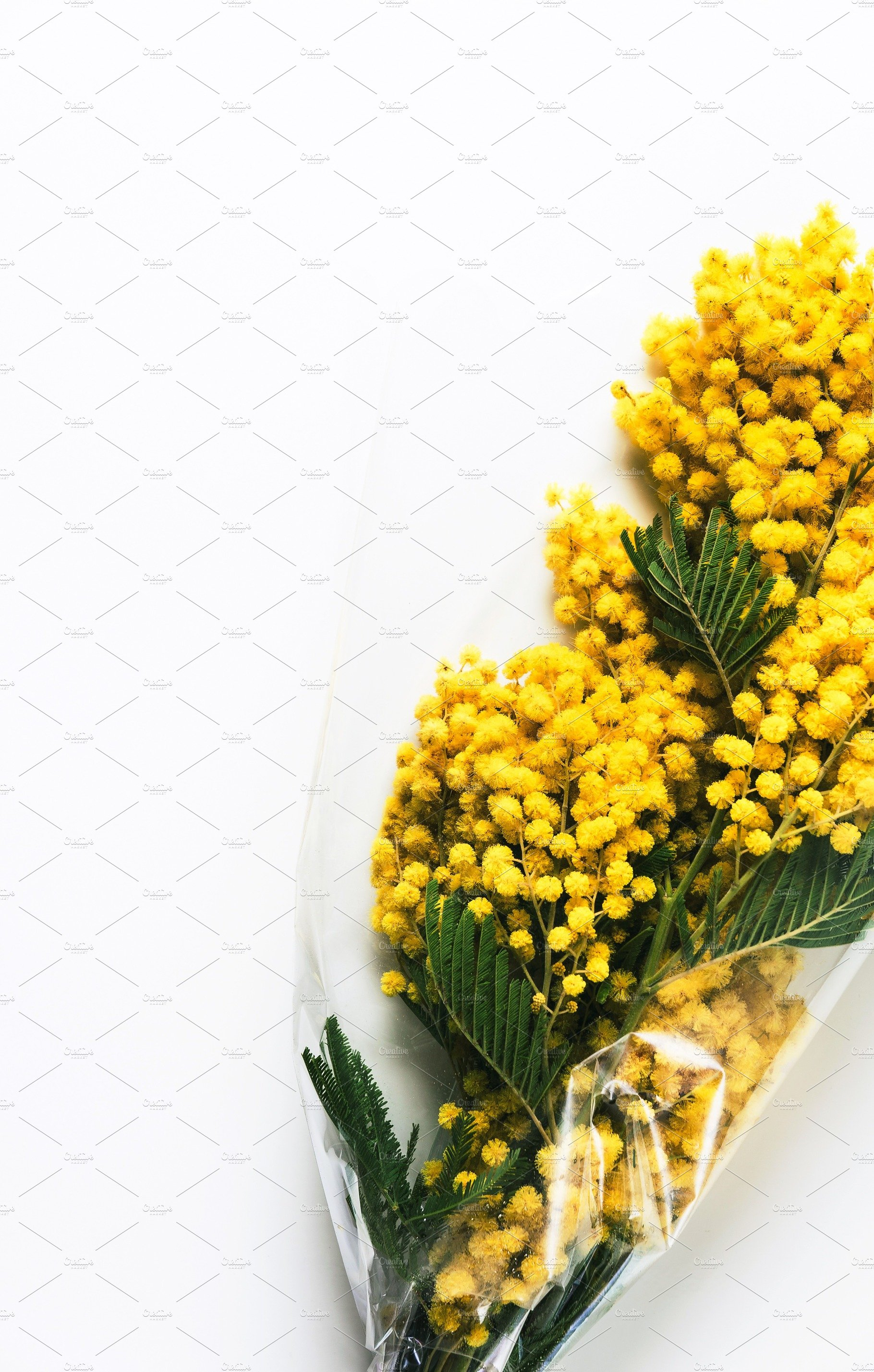 Yellow Mimosa Bouquet On White Backg Food Images Creative Market