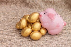 Pink piggy bank and golden egg