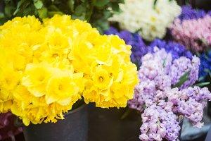 Daffodils on street market
