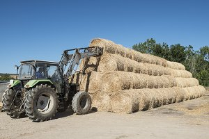 Tractor and straw bales