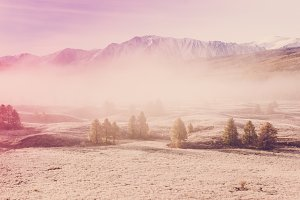 Fog in the mountain valley