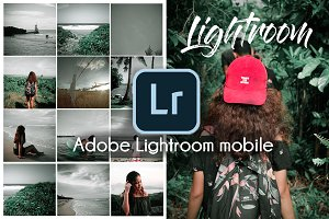 Free Adobe Lightroom Preset