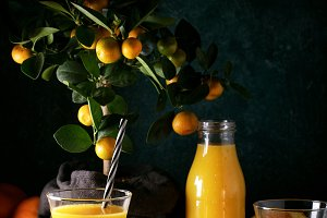 Orange Juice served with oranges
