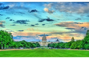 The United States Capitol on the National Mall in Washington, DC