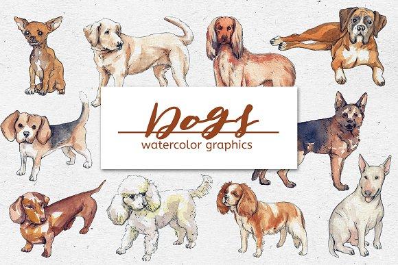 Bundle Of Watercolor DOG Graphics