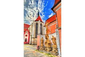 Church of the Presentation of the Blessed Virgin Mary in Ceske Budejovice, Czech Republic