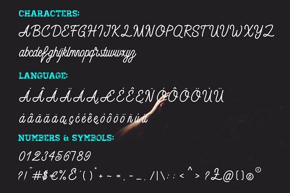 Monoline Font - Calligo in Script Fonts - product preview 4