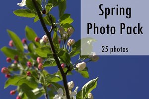 Spring Photo Pack - 25 Photos
